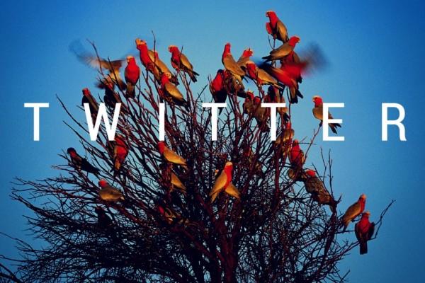 Twitter, Montag, Twitterschnipsel, bester Ü40 Blog